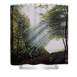 Forest Pathway Shower Curtain by Judy Kirouac