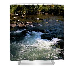 Forest Pool Shower Curtain