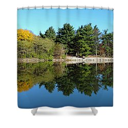 Shower Curtain featuring the photograph Forest Reflections by Teresa Schomig