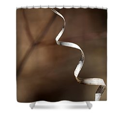 Forest Ribbon 3 Shower Curtain