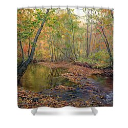 Forest River In Early Fall Shower Curtain