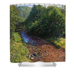 Forest River Summer Day Shower Curtain