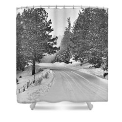 Forest Road In The Snow Shower Curtain