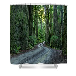 Forest Road. Shower Curtain