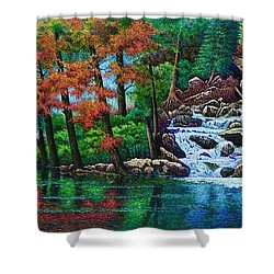 Forest Stream II Shower Curtain