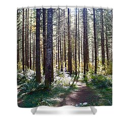 Forest Stroll Shower Curtain