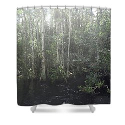 Forest, Sun Swamp Shower Curtain