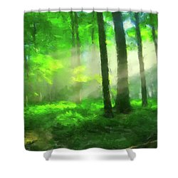 Forest Sunlight Shower Curtain by Gary Grayson
