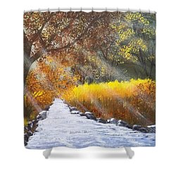 Forest Sunrays Over Water Shower Curtain