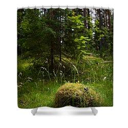 Forest Tales Shower Curtain by Konstantin Dikovsky