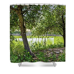 Shower Curtain featuring the photograph Forest Trail by Arik Baltinester