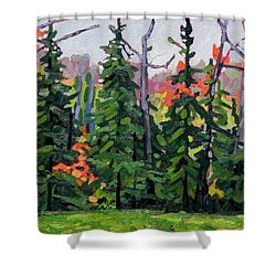 Forest Wall Shower Curtain