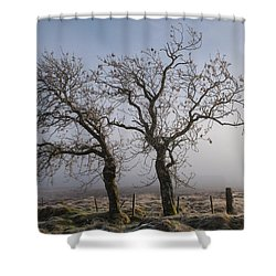 Shower Curtain featuring the photograph Forever Buddies Facing The Fog by Jeremy Lavender Photography
