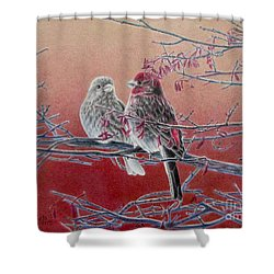 Forever Finch Shower Curtain by Pamela Clements