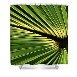 Forever Fronds Shower Curtain
