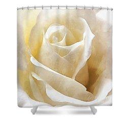 Forever More - Ivory Rose Shower Curtain