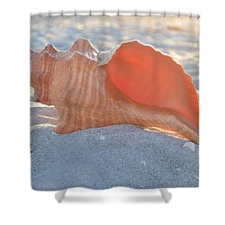 Shower Curtain featuring the photograph Forever Sanibel by Melanie Moraga