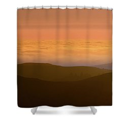 Forever Summer Shower Curtain