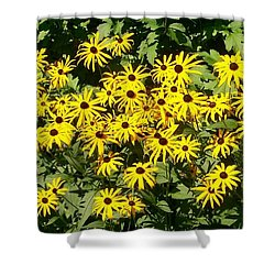 Shower Curtain featuring the digital art Forever Susan by Barbara S Nickerson