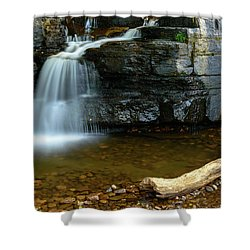 Forged By Nature Shower Curtain