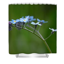 Forget-me-not 2 Shower Curtain by Jouko Lehto