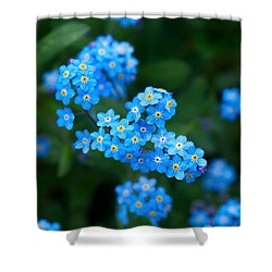 Forget -me-not 5 Shower Curtain by Jouko Lehto