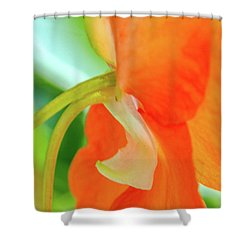Shower Curtain featuring the photograph Forget Me Not by Bill Gallagher