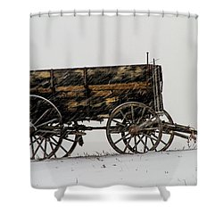 Forgotten Shower Curtain by Alana Thrower