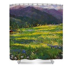 Forgotten Field Shower Curtain by David Patterson
