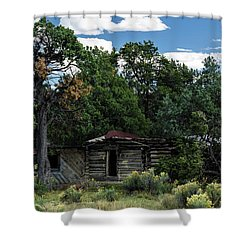 Forgotten Homestead - 8783 Shower Curtain