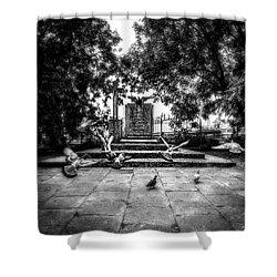 Forgotten Monument Shower Curtain