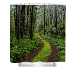 Forgotten Roads Shower Curtain