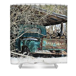 Forgotten Truck Shower Curtain