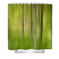 Forgotten Woods Shower Curtain