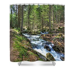 Forked Stream Shower Curtain