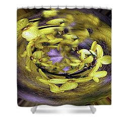 Shower Curtain featuring the photograph Forsythia Circle by Cathy Donohoue