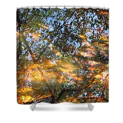 Aqueous Reflections Shower Curtain