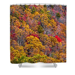 Fort Mountain State Park Cool Springs Overlook Shower Curtain by Bernd Laeschke