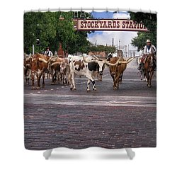 Fort Worth Cattle Drive Shower Curtain by David and Carol Kelly