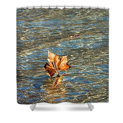 Shower Curtain featuring the photograph Fortune Sur L'eau by Marc Philippe Joly