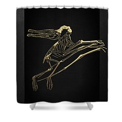 Shower Curtain featuring the digital art Fossil Record - Gold Pterodactyl Fossil On Black Canvas #2 by Serge Averbukh