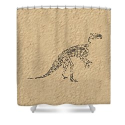 Fossils Of A Dinosaur Shower Curtain