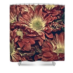 Foulee De Petales - 04b Shower Curtain