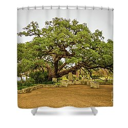 Founders Oak Shower Curtain