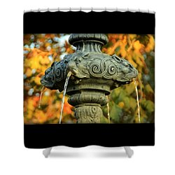 Shower Curtain featuring the photograph Fountain At Union Park by Chris Berry