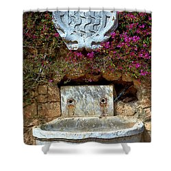 Shower Curtain featuring the photograph Fountains And Flowers At The Roman Walls In Tarragona by Eduardo Jose Accorinti