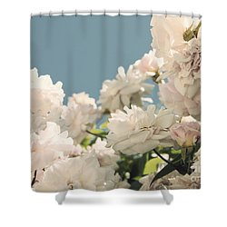 Fountains Of Roses Shower Curtain by Cindy Garber Iverson