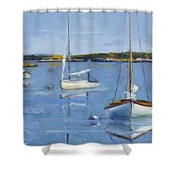 Four Daysailers Shower Curtain by Trina Teele