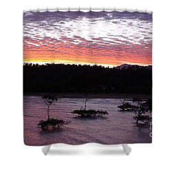 Four Elements Sunset Sequence 8 Coconuts Qld  Shower Curtain by Kerryn Madsen - Pietsch