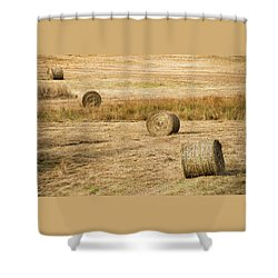 Four Hay Balls -  Shower Curtain